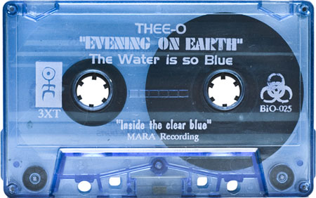 dj-thee-o-evening-on-earth
